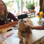 Boomer, our pet therapy dog sings the song of his doggo ancestors with a resident. He is known for his singing!